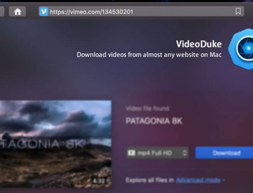 VideoDuke Video Downloader Review